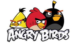 قتال الطيور الغاضبة