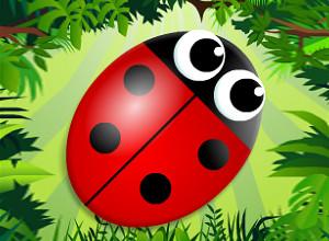 لعبة مصفوفات الحشرات