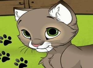 لعبة تجميل القطة بوسي